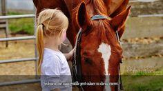 Seulement une main gentille peut calmer un cheval énervé.