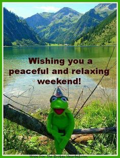 Have Happy Weekend. Great Weekend Quotes, Its Friday Quotes, Happy Weekend, Happy Saturday, Good Morning Quotes, Happy Friday, Weekend Humor, Weekend Greetings, Just Saying Hi