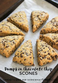 These pumpkin chocolate chip scones are sure to be your new fall favorite! Not only are these scones delicious, they are super simple to make! Chocolate Pies, Pumpkin Chocolate Chips, Chocolate Muffins, Pumpkin Recipes, Fall Recipes, Diy Pumpkin, Summer Recipes, Pumpkin Scones, Pumpkin Breakfast