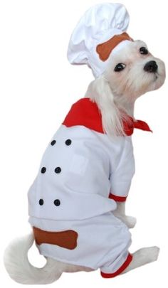 Anit Accessories Chef Dog Costume, 8-Inch $17.96