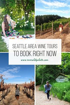 Wine tours in the Seattle area to book right now. If you are looking to explore wineries near Seattle but want to visit the best tasting rooms, try one of these winery tours that take you around different areas of Washington Wine Country. Seattle Hotels, Seattle Travel, Mount Rainier National Park, Travel Usa, Travel Tips, Seattle Area, Road Trip Essentials, Us National Parks, Wineries