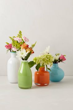 Color Pop Bud Vase $12.00 (perfect hostess gift)