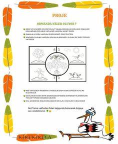 Proje Reggio, Preschool Activities, Map, Kids, Candle, Amigurumi, Crafting, Young Children, Boys