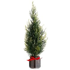 14' Glittered Cedar Tree in Glass Vase Green (Pack of 6) *** Find out more about the great product at the image link.