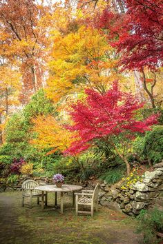 Gardening Autumn - The Gardeners - Paint the Fall with Color - Southernliving. Everyone who visits… - With the arrival of rains and falling temperatures autumn is a perfect opportunity to make new plantations Beautiful Landscapes, Beautiful Gardens, Landscape Design, Garden Design, Autumn Scenes, Garden Pictures, Autumn Garden, Fall Flowers, Garden Planning