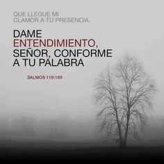Salmos 119:169