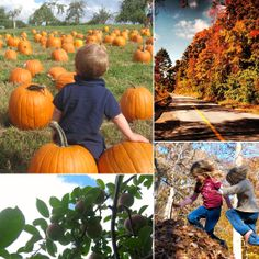 25 Outdoor Activities Perfect For Fall Weekends... We like this!
