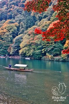 Arashiyama -Kyoto,Japan. This was one of my favorite places in Japan! I want to go back.