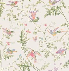 Hummingbirds  by Cole & Son - Soft Multi-Colour : Wallpaper Direct