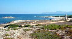 Ca'n Picafort, Mallorca: Ca'n Picafort on kuin luotu koko perheen leppoisaan lomaan. Saaren parhaimmistoon kuuluva, 14 kilometriä pitkä hienohiekkainen ranta sopii erinomaisesti hauskanpitoon lasten kanssa. Aikuiset nauttivat pikkukylän rennosta ilmapiiristä. Kiireetöntä lomailua värittävät harrastukset maalla ja merellä sekä rantakadun ravintolat. Vilkkampaa mallorcalaista menoa voi mennä seuraamaan läheiseen Alcudiaan tai Palman kaupunkiin, joka täyttää myös shoppailijan ja kulttuurin...