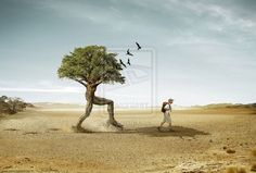 Photo Manipulations: Examples to Boost Your Creativity