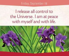 Louise Hay- I release all control to the universe. I am at peace with myself and with life.