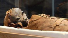 """""""The body of a perfectly preserved, carefully mummified an alien was found buried in an ancient pyramid. A mysterious creature from between 150 and 160 centimeters was found by an archaeologist near Lahun when exploring a small. Egyptian Kings, Ancient Egyptian Art, Ancient Greece, Aliens And Ufos, Ancient Aliens, Ancient Mysteries, Ancient Artifacts, Ufo Reports, Mummified Body"""
