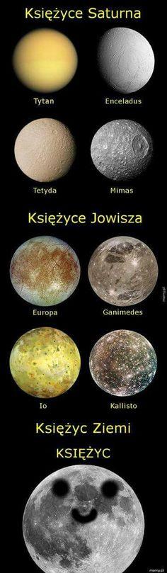 Polish Memes, Funny Mems, Text Memes, Love Memes, Life Humor, Haha, Knowledge, Geek Stuff, Concrete Garden