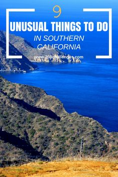 9 unusual things to do in Southern California, USA   203Challenges