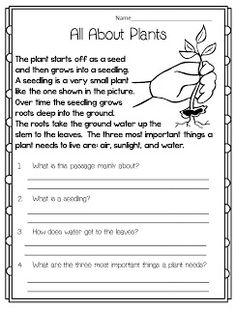 ... worksheet life science. on plants reading comprehension worksheets