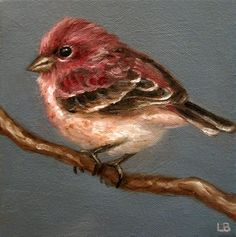 """Little Finch"" - Original Fine Art for Sale - © Larisa Brechun - - - Bird Pictures, Pictures To Paint, Bird Drawings, Animal Drawings, Pretty Birds, Beautiful Birds, Watercolor Bird, Watercolor Paintings, Art Design"