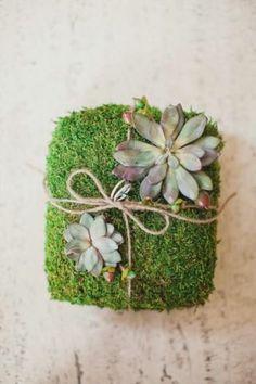 Loving this succulent ring pillow!