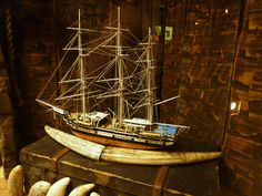 whaling ship model (with tusk carving)