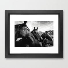 Horse heads Framed Art Print by Tomas Hudolin - $37.00