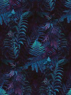 Photography dark beauty night Ideas for 2019 Blue Wallpapers, Wallpaper Backgrounds, Homescreen Wallpaper, Iphone Backgrounds, Iphone Wallpaper, Amoled Wallpapers, Catty Noir, Plant Background, Blue Texture