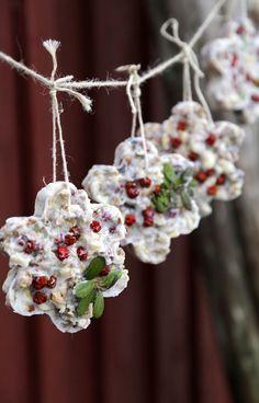 Kids Christmas, White Christmas, Christmas Crafts, Xmas, Tis The Season, Diy Projects, Birds, Sweet, Gardening