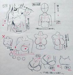 Sometimes drawing boobs is hard Human Figure Drawing, Figure Drawing Reference, Body Drawing, Art Reference Poses, Manga Drawing Tutorials, Drawing Techniques, Art Tutorials, Poses References, Anatomy Art