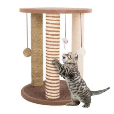 Furniture Scratches, Cat Furniture, Small Kittens, Cats And Kittens, Silly Cats, Cat Tree House, Cat Activity, Sisal Rope, Paws And Claws