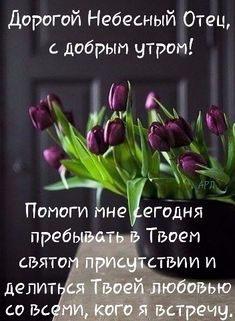 Христиане † Good Morning Photos, Flowers Nature, Herbs, Food, London, The Bible, Nice Weekend, Good Morning, Nice Asses