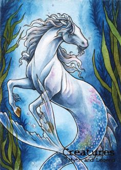 Hippocampus - Athina Poda Konstantinidou by Pernastudios on DeviantArt Greek Creatures, Mythical Creatures Art, Mythological Creatures, Horse Drawings, Cool Art Drawings, The Chupacabra, The Jersey Devil, Loch Ness Monster, Creature Feature