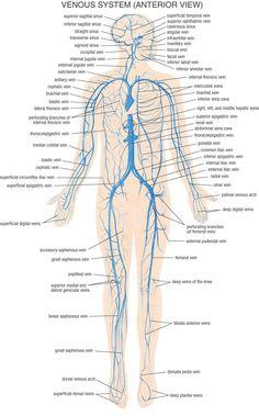 Fysiurgisk Massør | Tag hånd om din krop