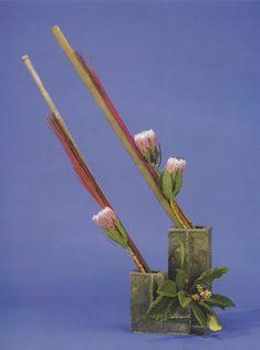 Design by Harriet Osborne Line Flower, Flower Show, Art Floral, Fresh Flowers, Beautiful Flowers, Floral Arrangements, Flower Arrangement, Ikebana, Flower Designs