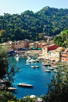 If you want to experience Europe, you need to travel to Italy. No other country on earth offers the depth, breadth, and scope of Italy. Italy Tourism, Italy Travel, Romantic Destinations, Travel Destinations, Romantic Vacations, Romantic Travel, Places To Travel, Places To See, Portofino Italy