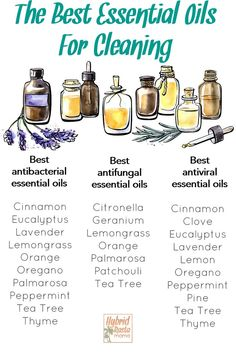 The best essential oils for cleaning broken down by those that are antimicrobial, antifungal, and antiviral. This printable chart is good to have on hand for quick reference when you are making your own essential oil cleaners. Essential Oil Cleaner, Thyme Essential Oil, Essential Oils Cleaning, Cinnamon Essential Oil, Doterra Essential Oils, Essential Oil Blends, Antibacterial Essential Oils, Anti Viral Essential Oils, Diffusers For Essential Oils