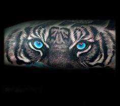 Gentleman With Tiger Blue Eyes Tattoo On Arm