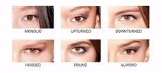 tipos de ojos - Buscar con Google