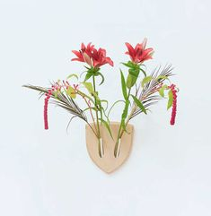 Turn plants into vegan wall mounts with this cool design, created by a team of Italian designers and inspired by the Japanese flower arrangement ikebana. Ikebana (生け花), also referred to as living flowers, is an ancient Japanese art of harmonious flower arrangement.