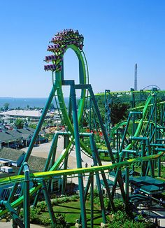 Raptor, Cedar Point, OH ~~ Rode this it's so smooth.