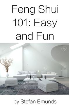 Book Cover Feng Shui 101 by Stefan Emunds