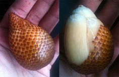 The snake fruit. I've heard it tastes good, but the LOOK definitely gets a 0 out of 10 for me.
