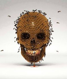 Hive Mind by Luke Dwyer