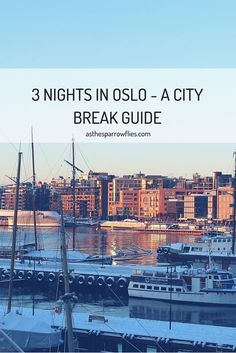 Oslo is a beautiful city to visit all year round - fjords, vikings, snow and a cool city vibe will have you backing your bag quick smart. Here's my 3 night itinerary if you decide to visit in Winter. http://asthesparrowflies.com/oslo-city-break/?utm_campaign=coschedule&utm_source=pinterest&utm_medium=Samantha%20Sparrow&utm_content=A%203%20Night%20Oslo%20City%20Break