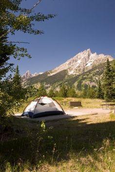 Camping Jenny Lake