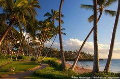 Ulua Beach, Wailea, Maui.  The walkway goes all along the waterfront past all of the Wailea Resorts...beautiful walk.