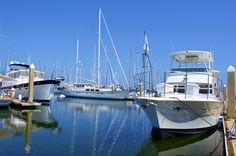 Tampa Bay Yacht Charter offers the Smooth C's, a 43' Viking motor yacht, USCG inspected for up to 20 passengers plus 2 crew