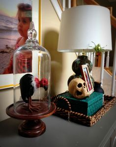 Halloween decor idea:: buy a terrarium & stick a creepy creature in it for a unique display