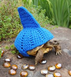 The creations of Katie Bradley, who has fun knitting adorable costumes for her 11 turtles...               Images © Katie Bradley (Etsy)