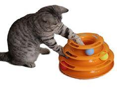 Yorkie ( ヨーキー  猫 ニャンコ キャット ネコ おもちゃ 玩具 ストレス 運動不足 解消 ペット 用品 (ボール オレンジ)