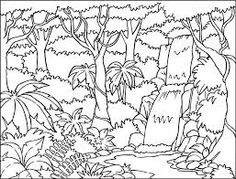 rain forest coloring pages printable coloring pages gallery