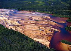 Athabasca Sand Dunes (let's go canoeing! Life Pictures, Nature Pictures, Life Pics, University Of Saskatchewan, Saskatchewan Canada, Riding Mountain National Park, Forest Ecosystem, Discover Canada